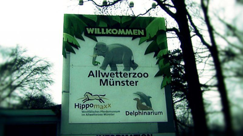 Mega-Spende für Allwetterzoo Münster (Foto: SAT.1 NRW)