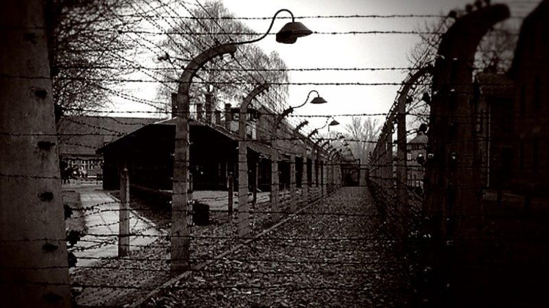 Fotos aus Auschwitz (Foto: SAT.1 NRW)