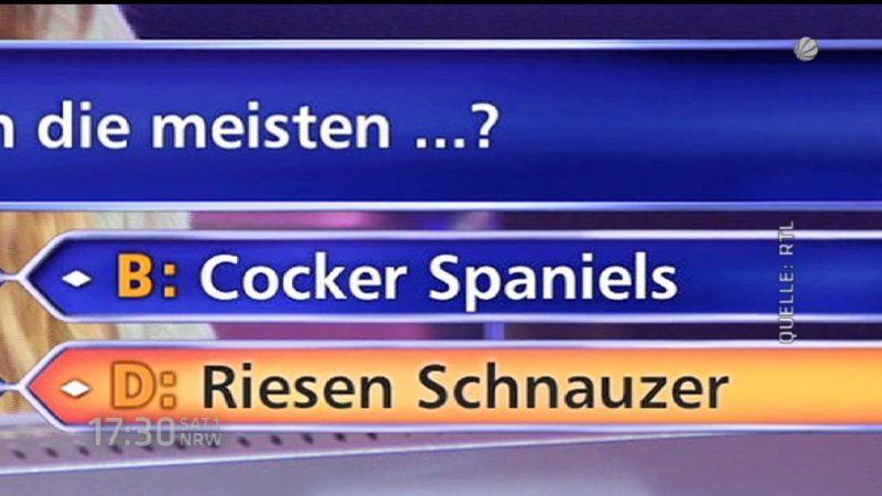 """Deutschland lacht über """"Wer wird Millionär""""-Kandidatin (Foto: SAT.1 NRW)"""