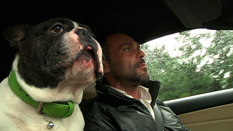 Bulldogge kann Krebs riechen (Foto: SAT.1 NRW)