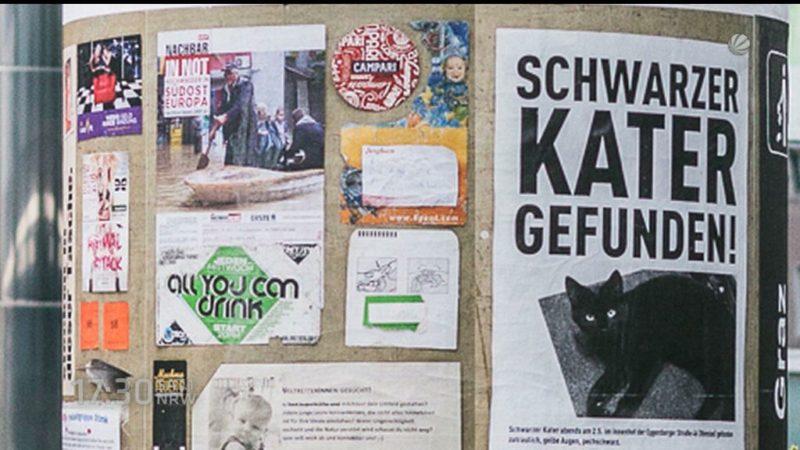 Weggeworfene Zettel werden zur Kunst (Foto: SAT.1 NRW)