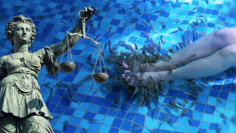 Bizarrer Prozess um Knabberfische (Foto: SAT.1 NRW)