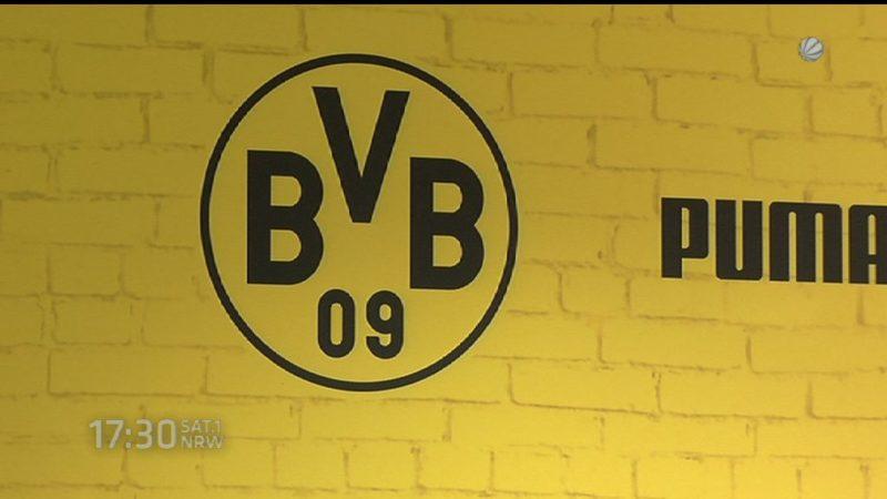 BVB Pressekonferenz zum Spiel gegen Odds BK (Foto: SAT.1 NRW)