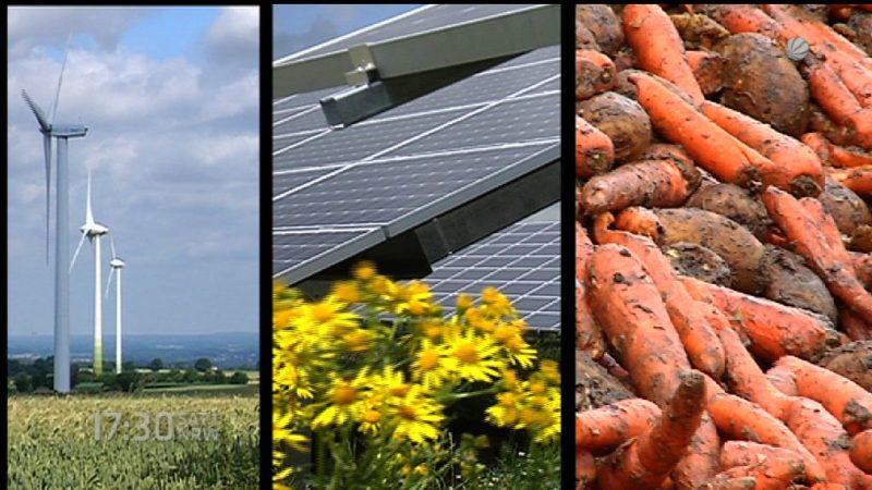 Viele neue Jobs in der Umweltwirtschaft (Foto: SAT.1 NRW)