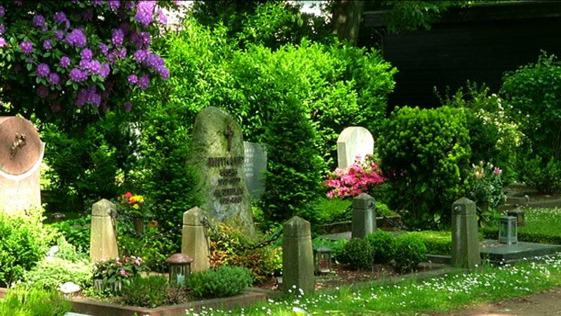 Brunnen-Bestattung in Hagen (Foto: SAT.1 NRW)