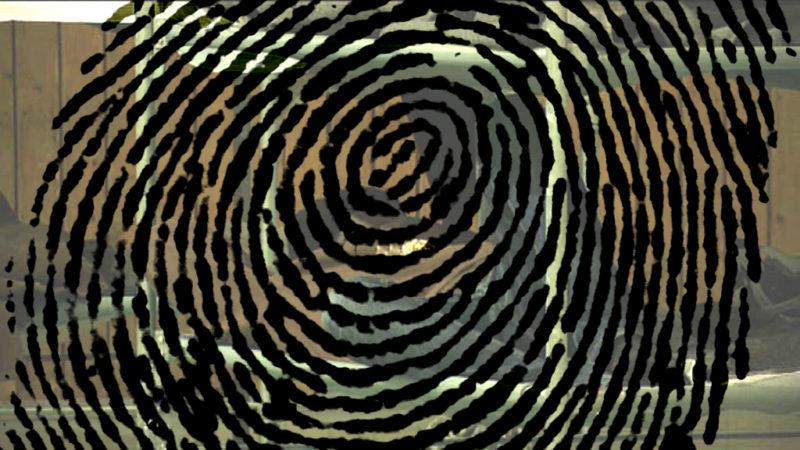 Fingerabdruckpflicht für Flüchtlinge? (Foto: SAT.1 NRW)