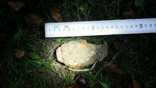 Mädchen fand Granate auf Schulhof (Foto: Polizei)