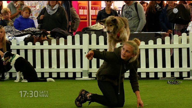 Messe Hund & Pferd in Dortmund (Foto: SAT.1 NRW)