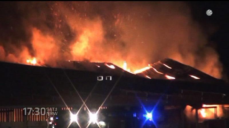 Feuer in einem Pferdestall (Foto: SAT.1 NRW)