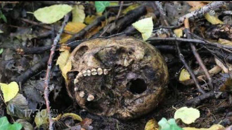 Skelettschädel indentifiziert (Foto: SAT.1 NRW)