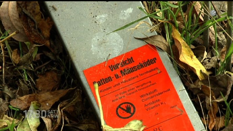 Rattengift an einer Dortmunder Kita (Foto: SAT.1 NRW)
