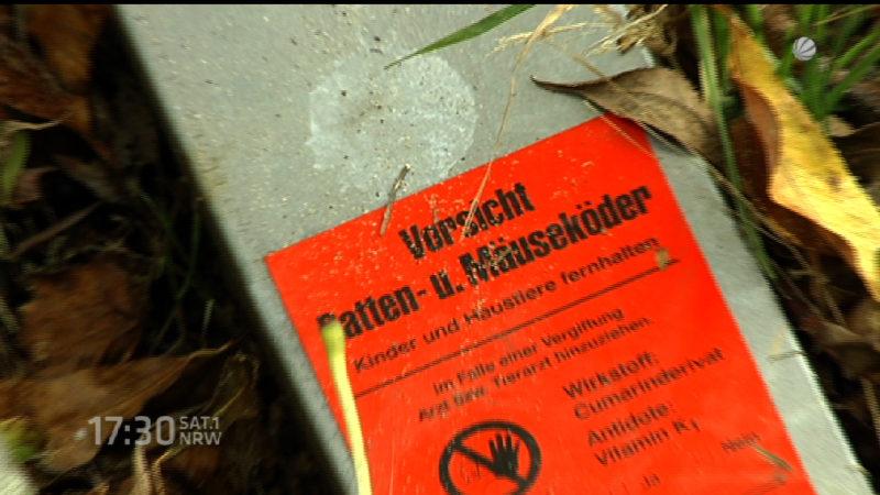 Polizei ermittelt nach Rattengift-Fund in Kita (Foto: SAT.1 NRW)