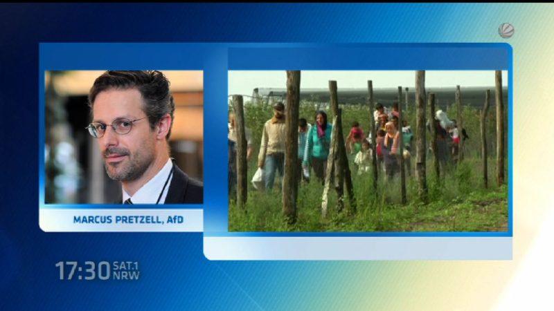AfD würde auf Flüchtlinge schießen (Foto: SAT.1 NRW)