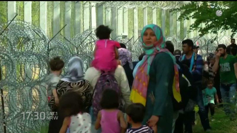 Das fordert Deutschland in der Flüchtlingskrise (Foto: SAT.1 NRW)