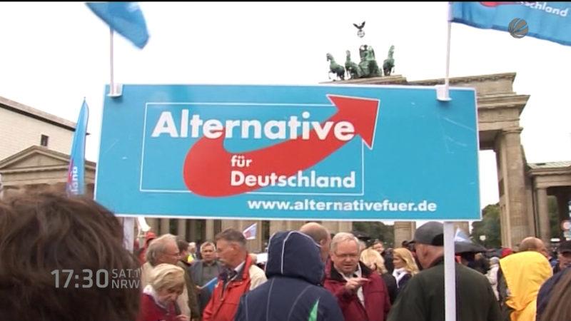 AfD im Aufwind (Foto: SAT.1 NRW)