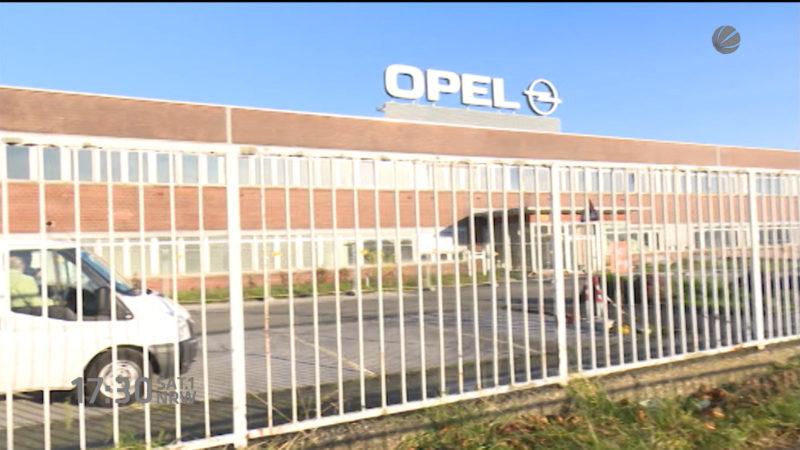 Nur 260 Opelaner bisher vermittelt (Foto: SAT.1 NRW)