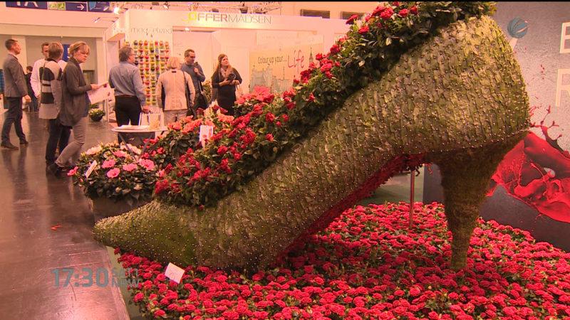 Pflanzenmesse in Essen (Foto: SAT.1 NRW)