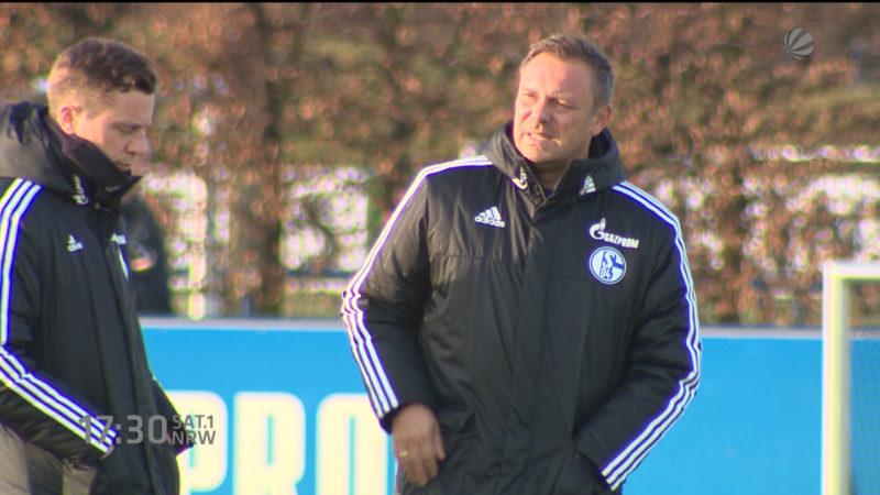 Trainerdiskussion auf Schalke? (Foto: SAT.1 NRW)