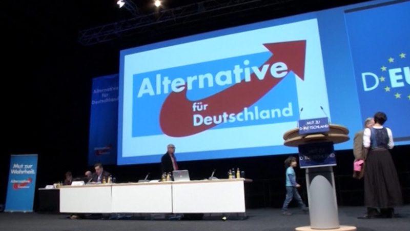 Gabriel will AfD beobachten lassen (Foto: Sat.1 NRW)