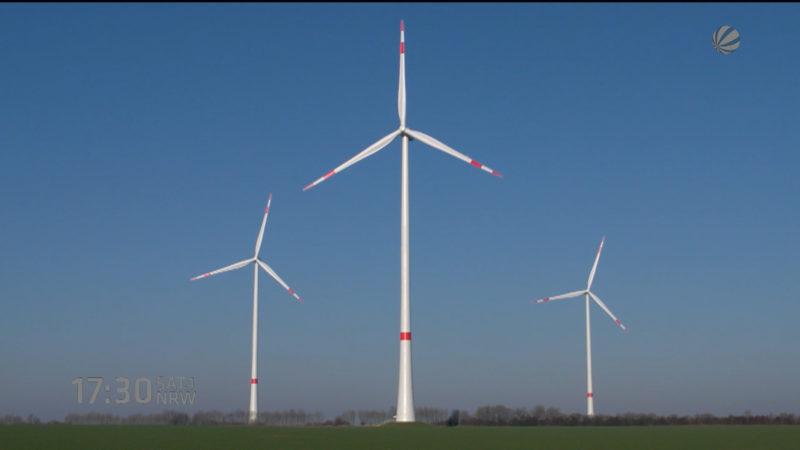 Windpark am Netz (Foto: SAT.1 NRW)