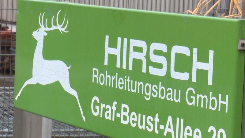 Unternehmen Hirsch am Ende (Foto: SAT.1 NRW)
