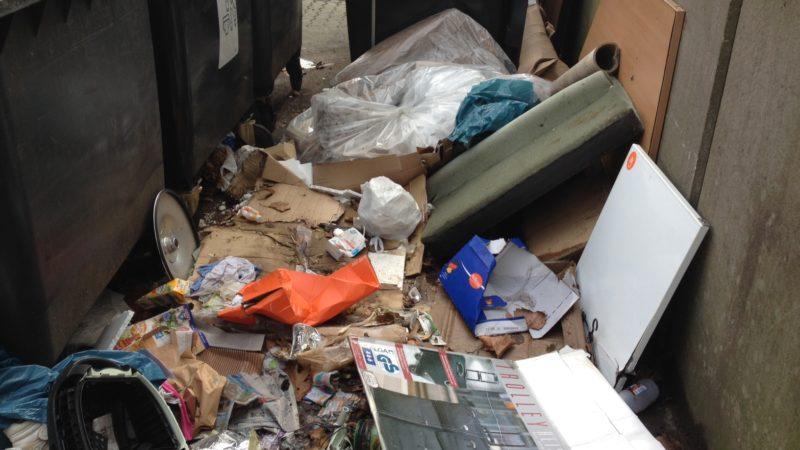 Ratten, Schimmel und Asbest in Dortmund (Foto: SAT.1 NRW)