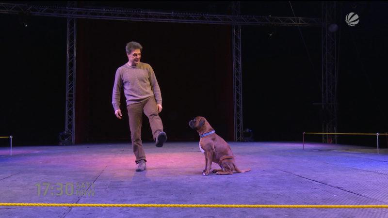 Dog-Show in Lüdenscheid (Foto: SAT.1 NRW)