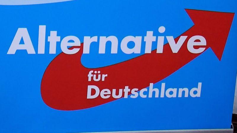 AfD ist Wahlgewinner (Foto: SAT.1 NRW)