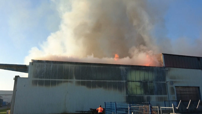 800 Tonnen Papier fangen Feuer (Foto: SAT.1 NRW)