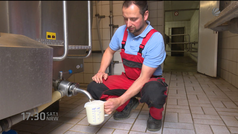 So können Milchbauern überleben (Foto: SAT.1 NRW)