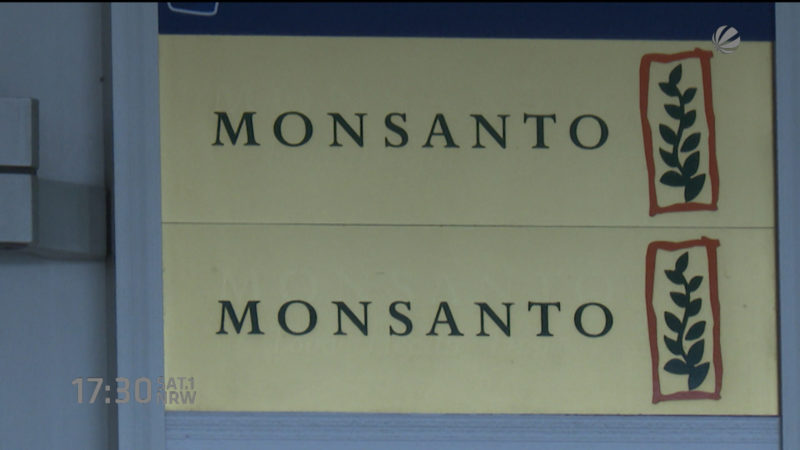 Bayer will Monsanto übernehmen (Foto: SAT.1 NRW)