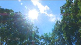 Der 5-Stunden-Sommer (Foto: SAT.1 NRW)