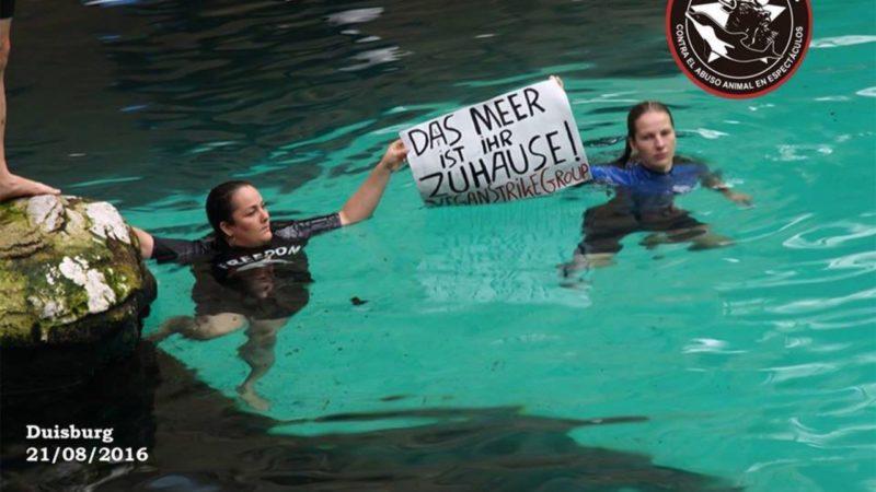 Aktivisten stürmen Delfinarium (Foto: Facebook)