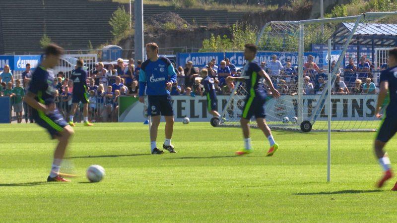 Schalke auf der Suche nach einem Sechser (Foto: SAT.1 NRW)