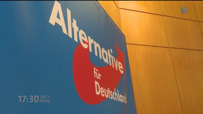 AfD auch bald drin? (Foto: SAT.1 NRW)