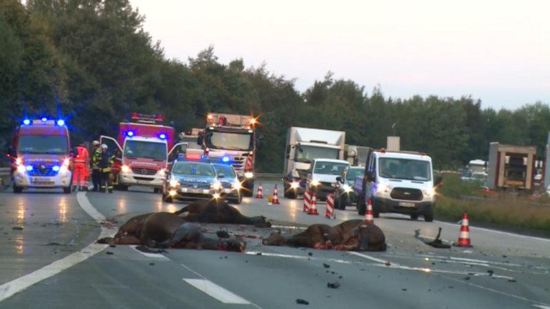 Tödlicher Unfall (Foto: Si-News.Tv)