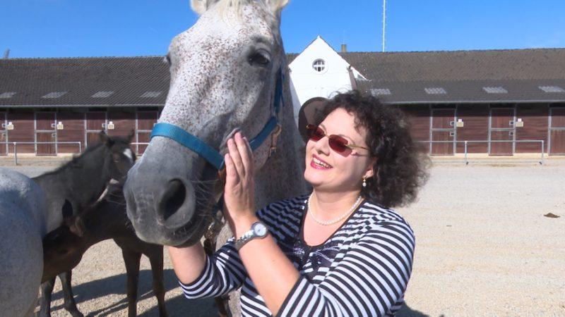80 Pferde vor dem Schlachter gerettet (Foto: SAT.1 NRW)