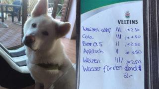 Wasser für Hund kostet 2 Euro (Foto: SAT.1 NRW)