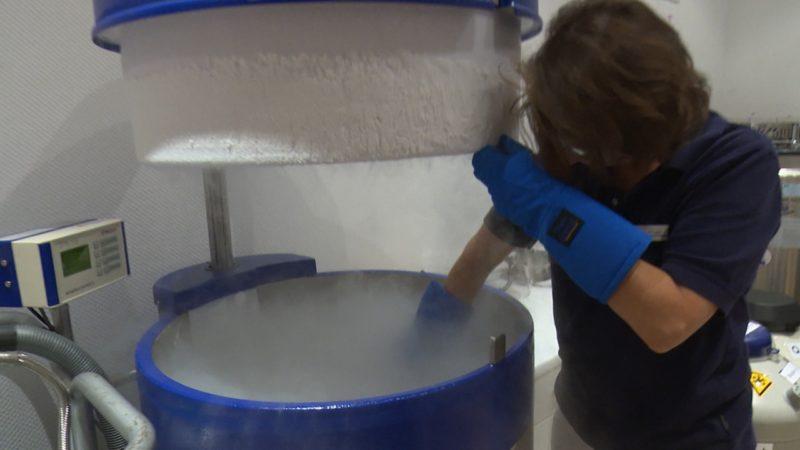 Eizellen einfrieren - für die Karriere (Foto: SAT.1 NRW)