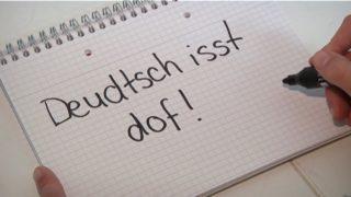 Wir können kein Deutsch mehr (Foto: SAT.1 NRW)