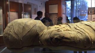 Eine Mumie für Münster (Foto: DPA)