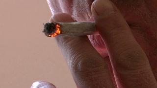 Cannabis legal für alle? (Foto: SAT.1 NRW)