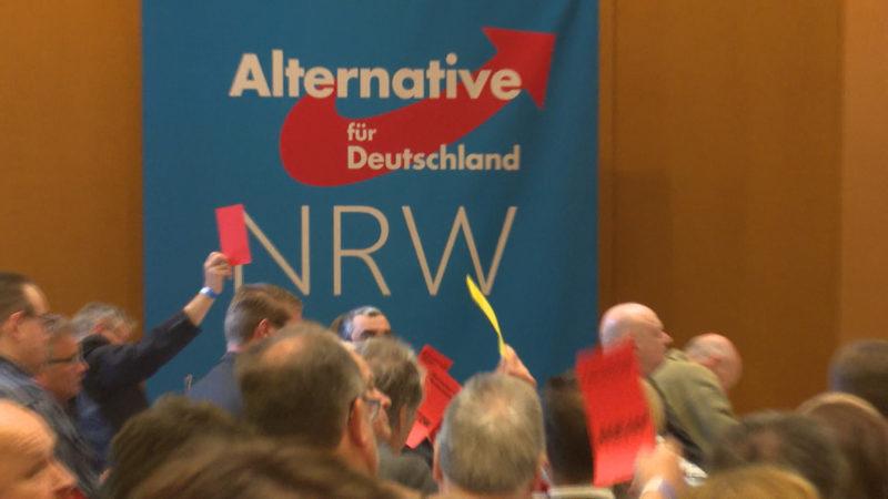 NRW-AfD zerfleischt sich selbst (Foto: SAT.1 NRW)