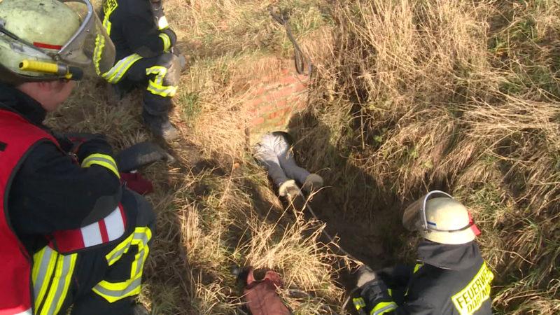 Ungewöhnliche Rettung (Foto: Videonews24)