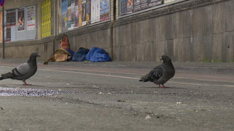Obdachlos für eine Nacht (Foto: SAT.1 NRW)