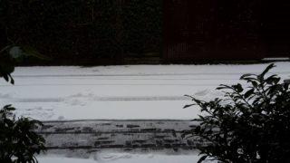 Schnee-Chaos in NRW (Foto: Privat)