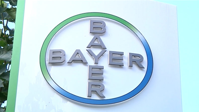 Bayer vor Monsanto-Übernahme (Foto: SAT.1 NRW)