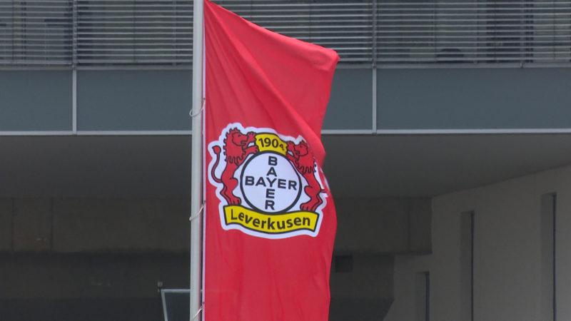 Leverkusen vor Europa League-Turnier (Foto: SAT.1 NRW)