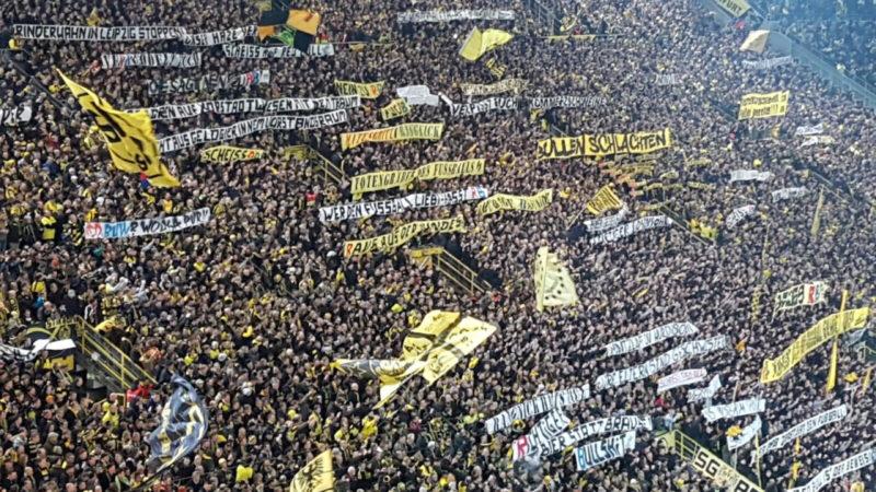 BVB-Fans randalieren bei Heimspiel (Foto: SAT.1 NRW)