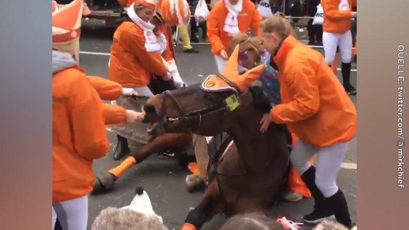 Promis gegen Pferde im Karneval (Foto: twitter.com/@mirkchief)